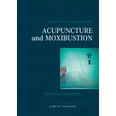 Acupuncture and Moxibustion - E-bog Sumiko Knudsen