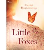 Little Foxes - E-bog Harriet Beecher-Stowe