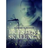 Præsten i Skalunga - E-bog Elisabeth Beskow