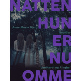 - natten hun er nu omme - E-bog Annemarie Bjerg