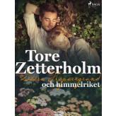Stora Hoparegränd och himmelriket - E-bog Tore Zetterholm