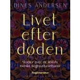Livet efter døden. Studier over de ældste indiske begravelsesritualer - E-bog Dines Andersen