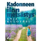 Kadonneen ilon metsästys - E-bog Anja Kulovesi