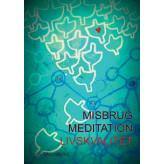 Misbrug, Meditation, Livskvalitet Lis Sandberg