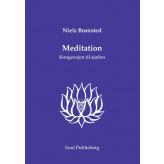 Meditation Niels Brønsted