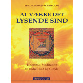 At vække det lysende Sind - Incl CD Tenzin Wangyal Rinpoche