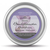 Dr Bach Pastiller - Koncentration - Klarhed og udholdenhed