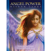 Angel Power Wisdom Cards Gaye Guthrie