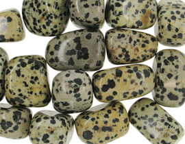 Image of   Dalmatiner jaspis - pr sten