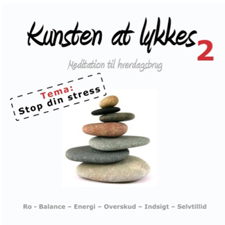 Kunsten at lykkes 2 ? STOP din stress!