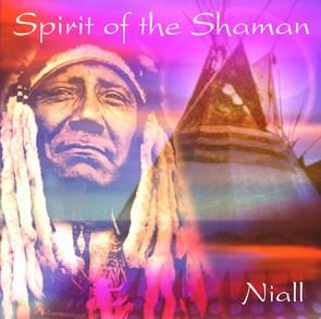 Spirit of the shaman fra N/A på bog & mystik
